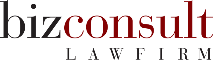 BizConsult-Lawfirm-